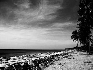 Beach at Kerala