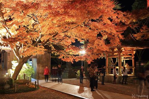 Daikouzenji Temple