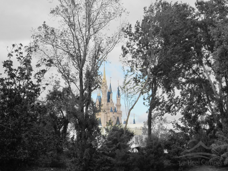 Walt Disney World - Magic Kingdom - Cinderella's Castle