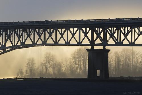 bridge sunlight silhouette fog sunrise portland landscape cityscape foggy rossislandbridge