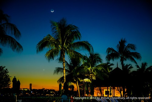 sunset sky moon silhouette skyscape dusk horizon palm atlantis tropical nassau goldenhour bahama paradiseisland f15