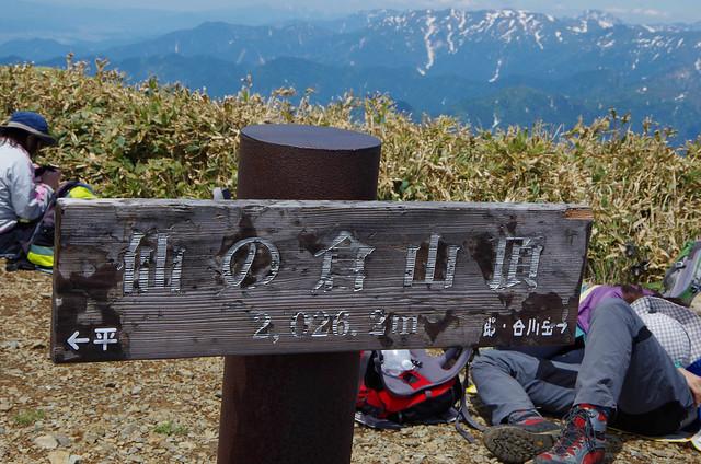 20150607-仙ノ倉山S-0109.jpg