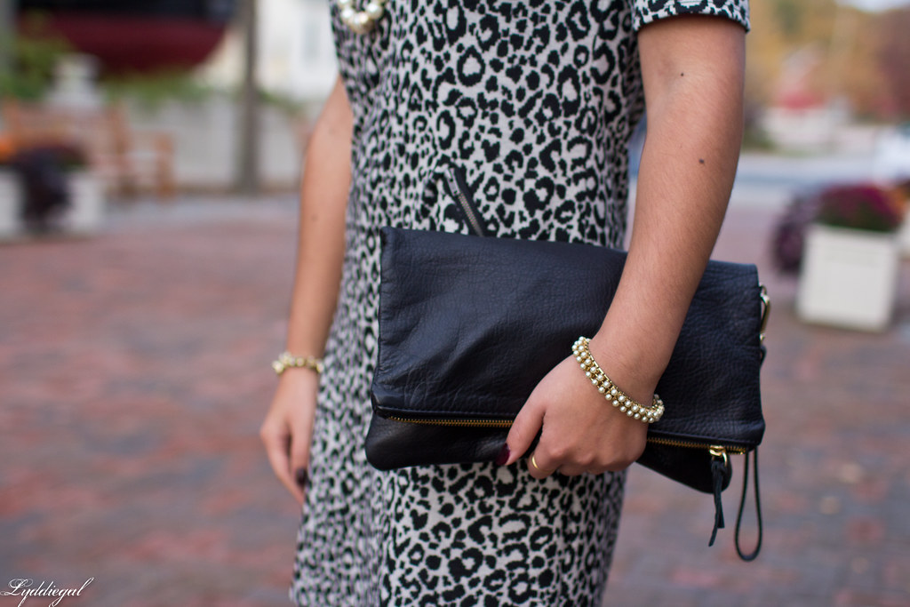leopard dress, black clutch, black heels-2.jpg
