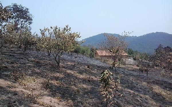 incêndio_domtomás!.jpg
