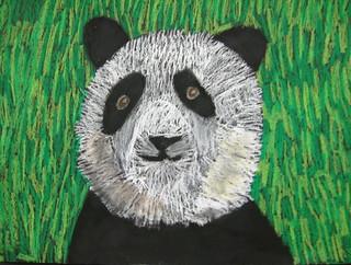 Panda by Chloe B.
