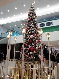 10 CIRCLEG 海港城 聖誕火車熊熊 (1)