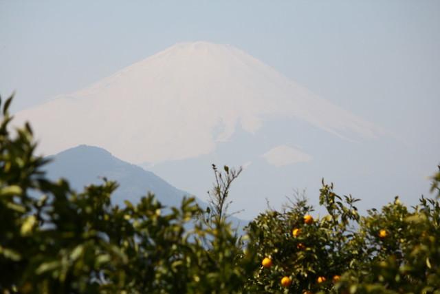 2014-03-16_00083_高松山