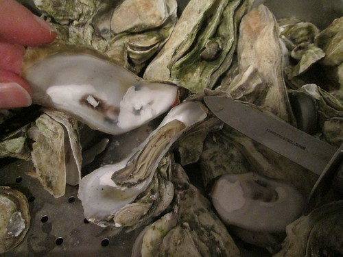 Oyster roast at Dale's at Lake Waccamaw