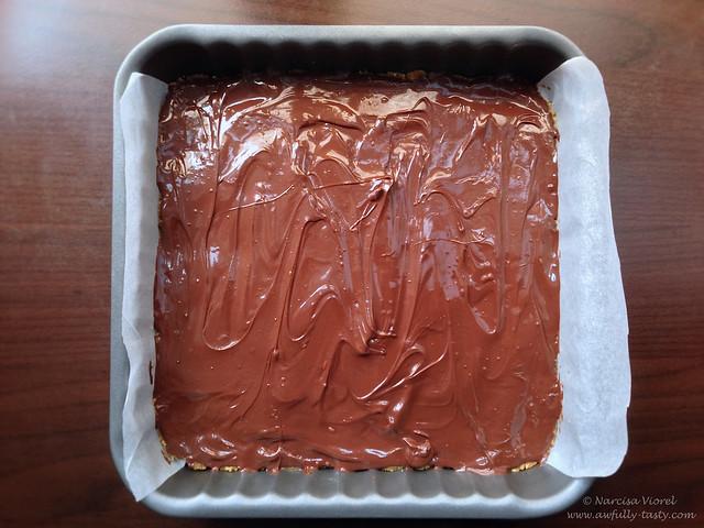 Prajitura cu unt de arahide si ciocolata