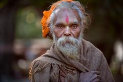 Inde du nord 2014: sadhu à Rishikesh