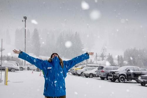 Snowing at Boreal