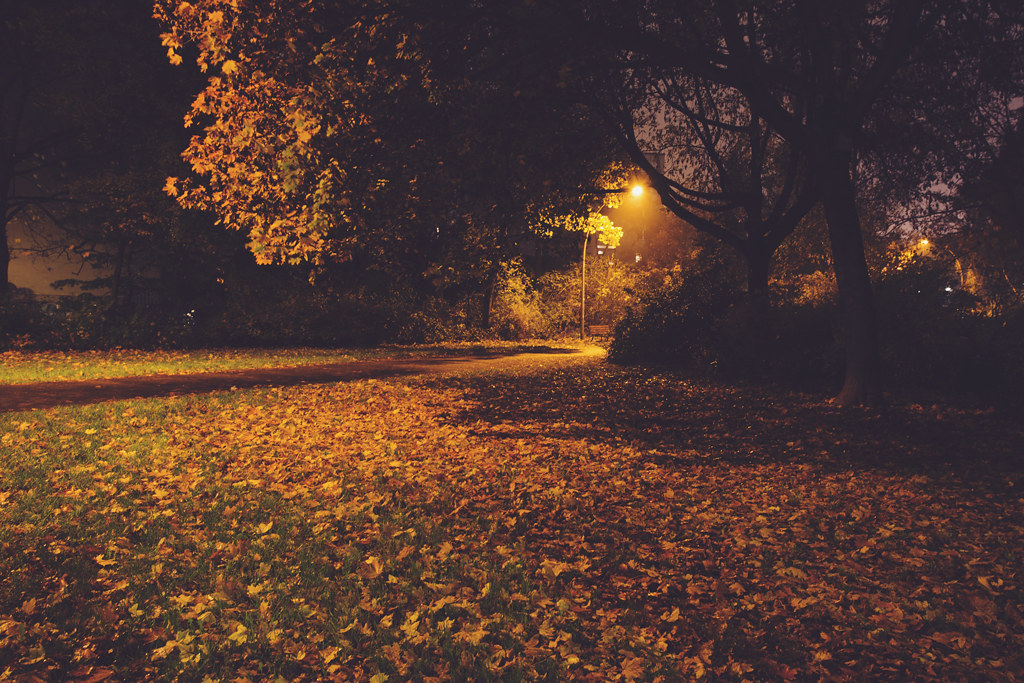 136/365 - a warm november night