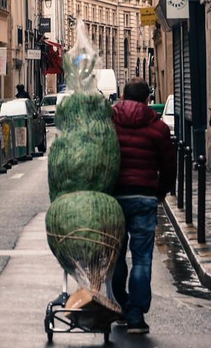France December-32.jpg