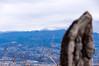 赤城山最高峰の黒檜山は雪に覆われる@石仏の尾根
