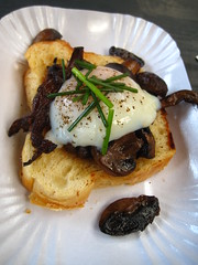 Truffled mushrooms on brioche with poached egg