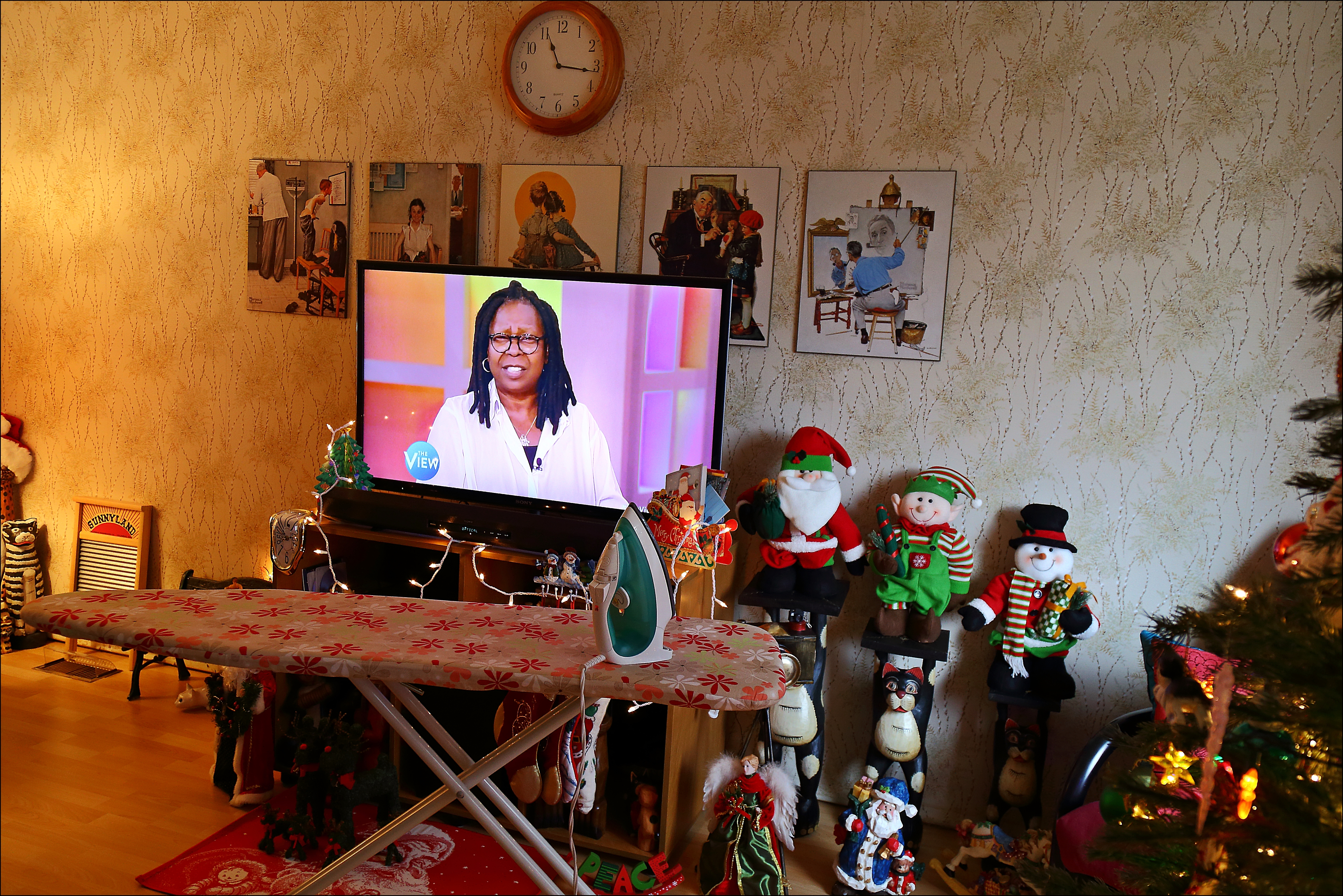 Ironing With Whoopi. canon, tv, iron, chores, 6d. buy photo