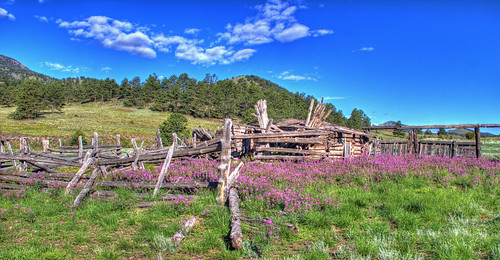 flowers abandoned landscape ruins colorado shed meadow hdr