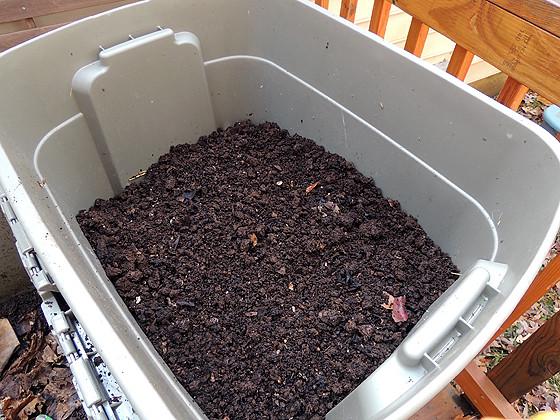 worm-composting-18