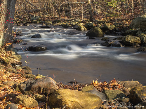longexposure trees winter water canon newjersey rocks stream powershot ringwood g12 ringwoodstatepark smack53