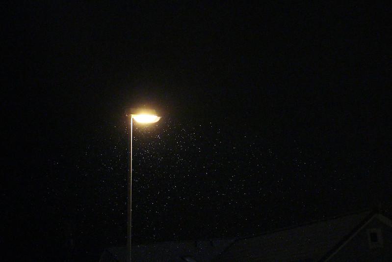 Fallende snø