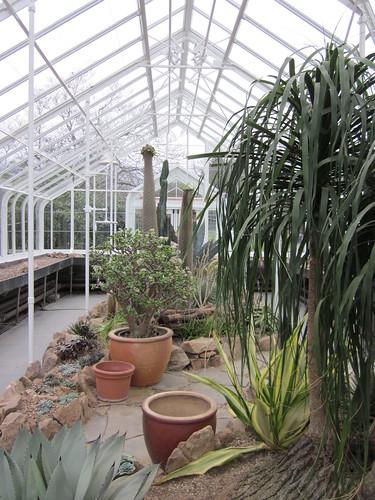 Voluteer Park Conservatory