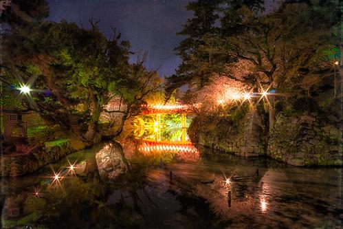 longexposure bridge flower texture spring 桜 sakura cherryblossoms 花 石垣 ishigaki 春 yozakura 夜桜 okazakicastle 岡崎城 龍城 tatsucastle