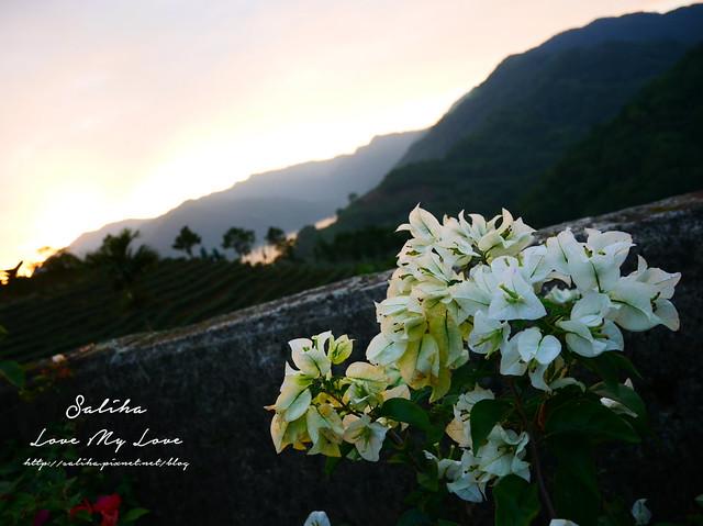 新北石碇景點千島湖八卦茶園 (9)
