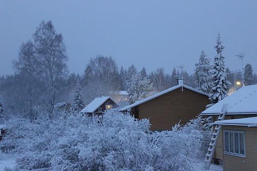Snow 13_12_2014_2