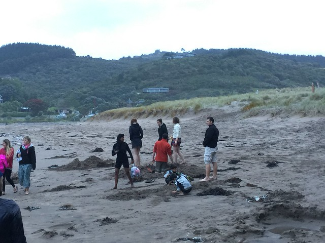 Hot Water Beach, where you can dig your own hot spring