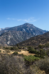 Kings Canyon & Sequoia - 246