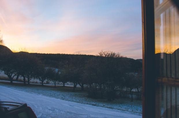 pink winter morning