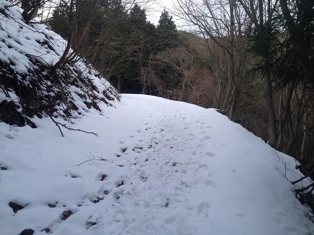 養老山・笙ヶ岳 登山道