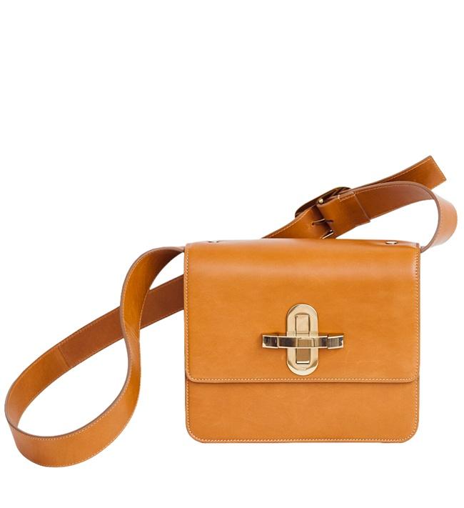 6 Chloe Devon Bag