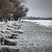 Balaton in winter (2014) by Warkas