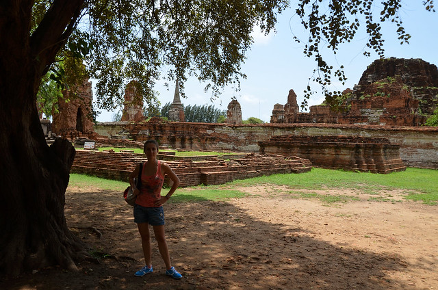 Baj un árbol, a la sombra, frente a uno de los templos de Ayutthaya