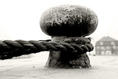 Gullivers rope