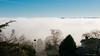 View Ridge Fog