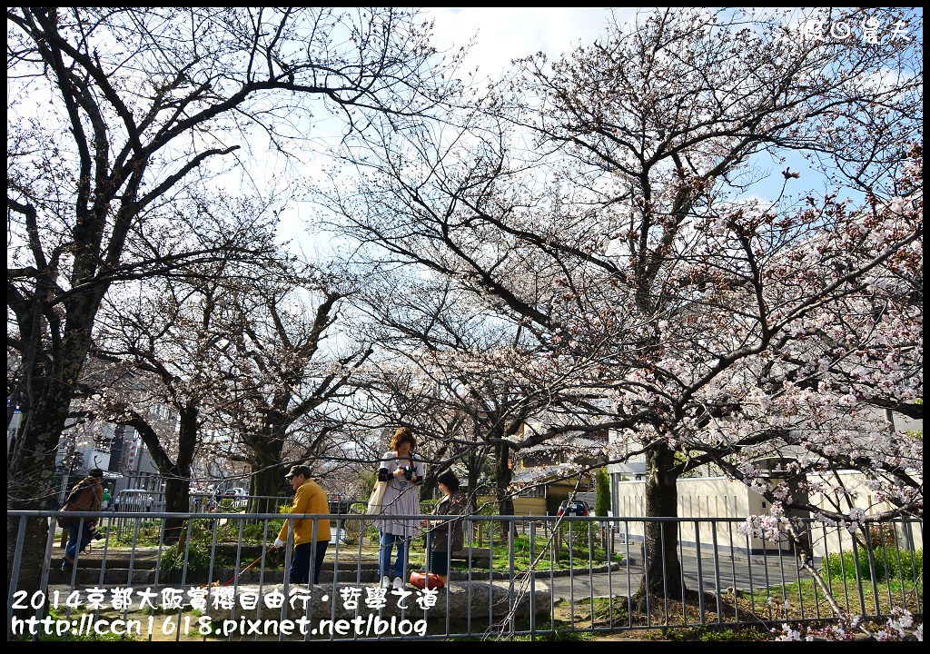 2014京都大阪賞櫻自由行.哲學之道DSC_0478