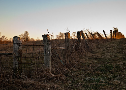 old blue winter sky grass fence indiana treetrunk barbedwire goldenhour d80
