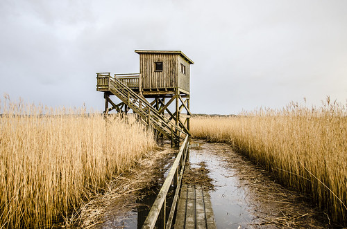 sea sky tower reed nature stairs reflections wooden cloudy footbridge sweden swedish staircase boardwalk slott tjolöholm