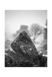 Brimham Rocks - monolith (P1170696.RW2)