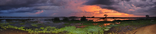 travel blue trees sunset red sky panorama cloud lake colour tree water clouds landscape asia purple bright outdoor pano wetlands serene srilanka ceylon uva grasslands southasia uvaprovince weerawilalake