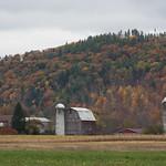 Farm near the Finger Lakes