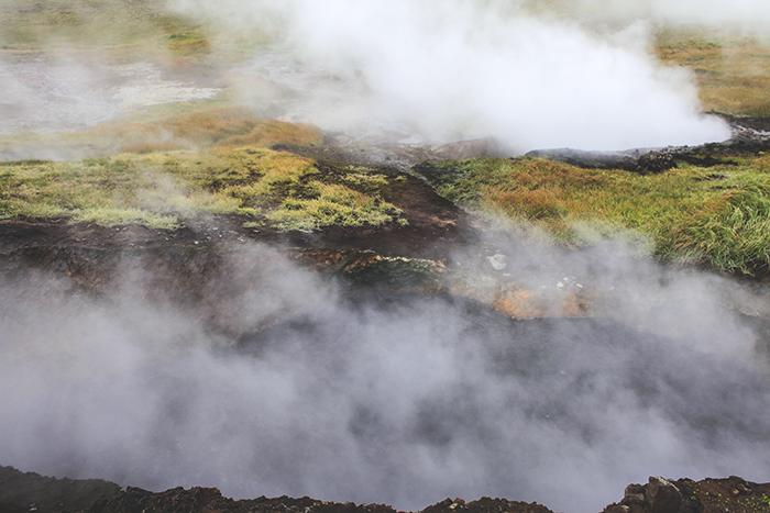 Iceland_Spiegeleule_August2014 043