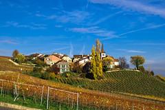 Féchy, VD Switzerland