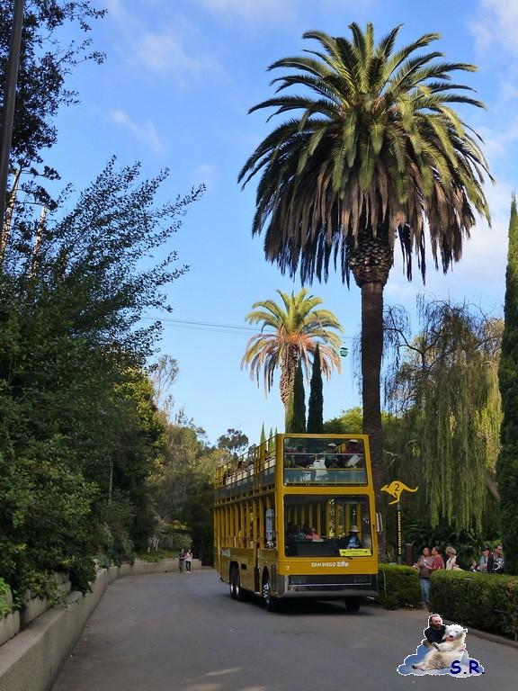 San Diego Zoo 10.11.2014 256