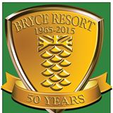 Bryce Resort Skiing and Kinder School - Basye, VA