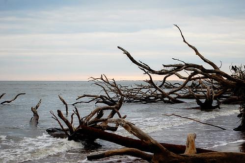 BoneYard Beach-2014
