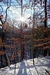 Buckeye Trail :: Kirtland