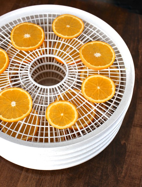 orange-slices-dehydrator-trays